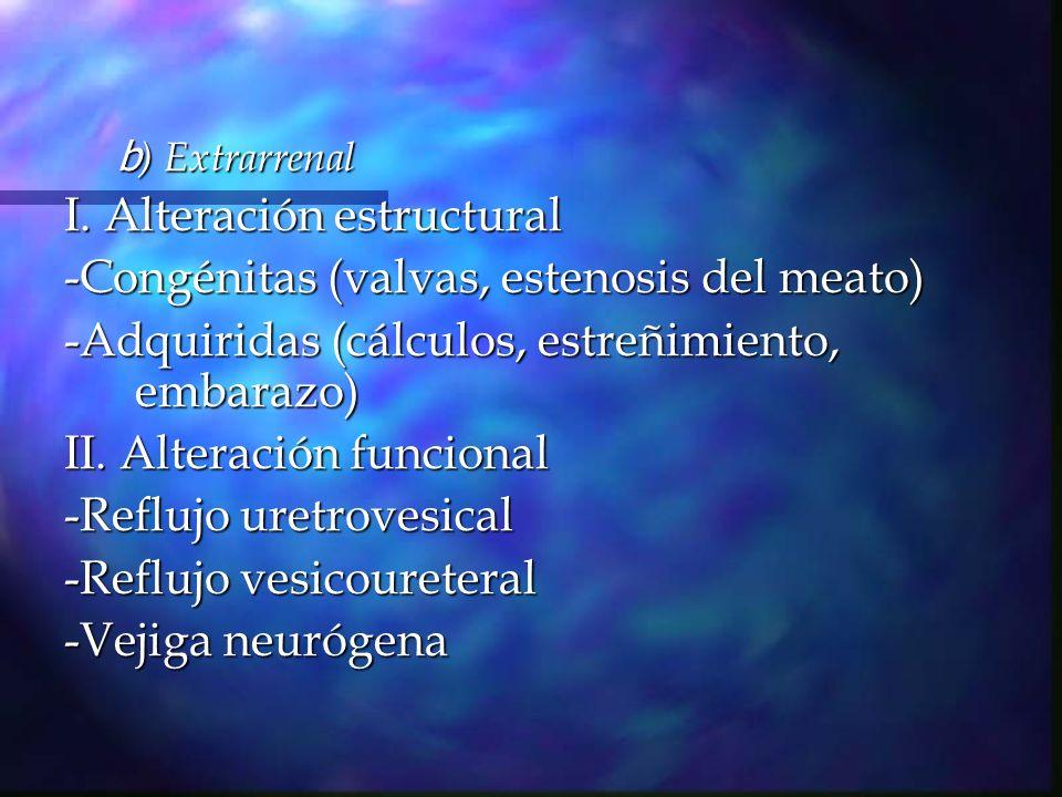 Reflujo vesicoureteral Reflujo vesicoureteral Se puede presentar en tos, interrupción voluntaria de la micción, retardo en vaciamiento vesical, o bien por disfunción del cuello vesical o de la uretra.