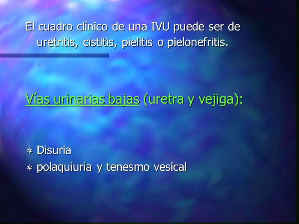 Vías urinarias altas (pielitis, pielonefritis): Dolor lumbar o abdominal Dolor lumbar o abdominal Localizado en los cuadrantes superiores Localizado en los cuadrantes superiores Malestar general Malestar general Fiebre Fiebre