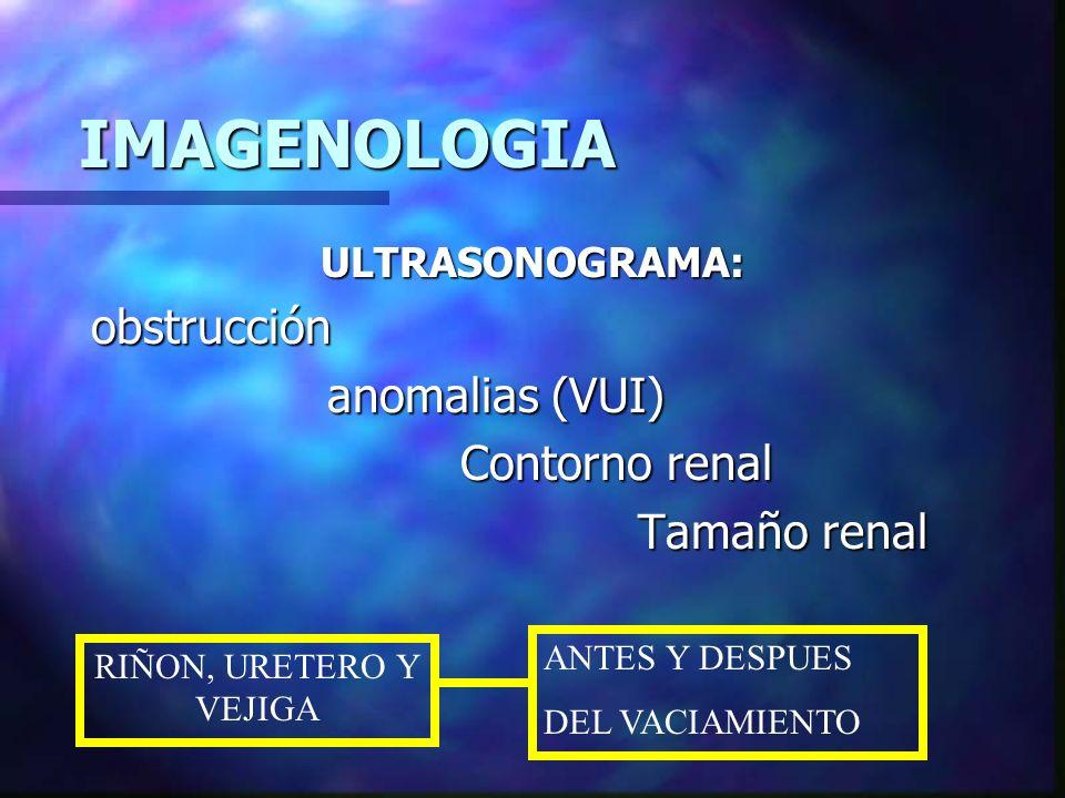 IMAGENOLOGIA GAMMAGRAFÍA Función renal Función renal Integridad del parénquima Integridad del parénquima Obstrucción funcional Obstrucción funcional ADMS funcion tubular ADMS funcion tubular cicatrización renal cicatrización renal