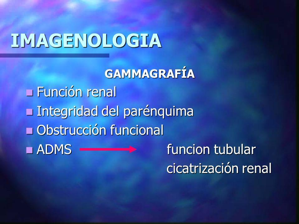 IMAGENOLOGIA PIELOGRAFÍA INTRAVENOSA USG no concluyente USG no concluyente VUS VUS +Rx simple abdominal +Rx simple abdominal Cicatrización parenquimatosa Cicatrización parenquimatosa Función de Nefrona Función de Nefrona Trastornos parenquimatosos CG Trastornos parenquimatosos CG