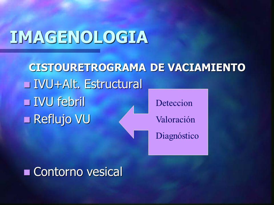 IMAGENOLOGIA UROGRAFÍA EXCRETORA.