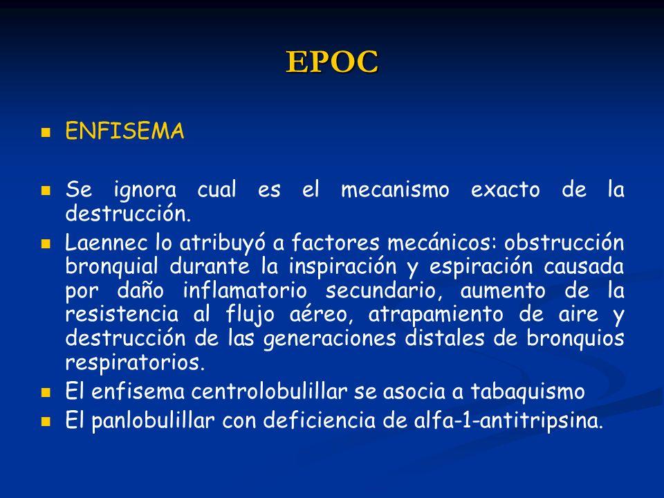 EPOC ENFISEMA Se ignora cual es el mecanismo exacto de la destrucción. Laennec lo atribuyó a factores mecánicos: obstrucción bronquial durante la insp