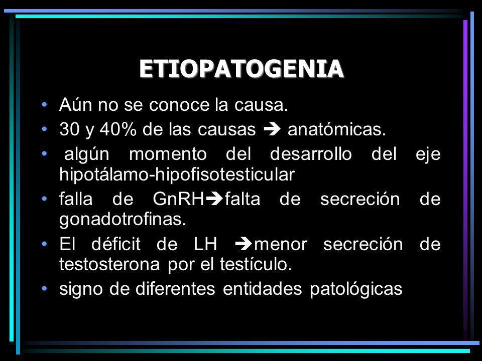 ETIOPATOGENIA Aún no se conoce la causa. 30 y 40% de las causas anatómicas. algún momento del desarrollo del eje hipotálamo-hipofisotesticular falla d