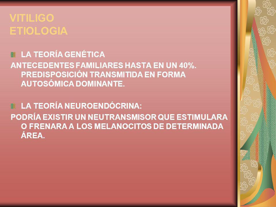 VITILIGO ETIOLOGIA LA TEORÍA GENÉTICA ANTECEDENTES FAMILIARES HASTA EN UN 40%. PREDISPOSICIÓN TRANSMITIDA EN FORMA AUTOSÓMICA DOMINANTE. LA TEORÍA NEU