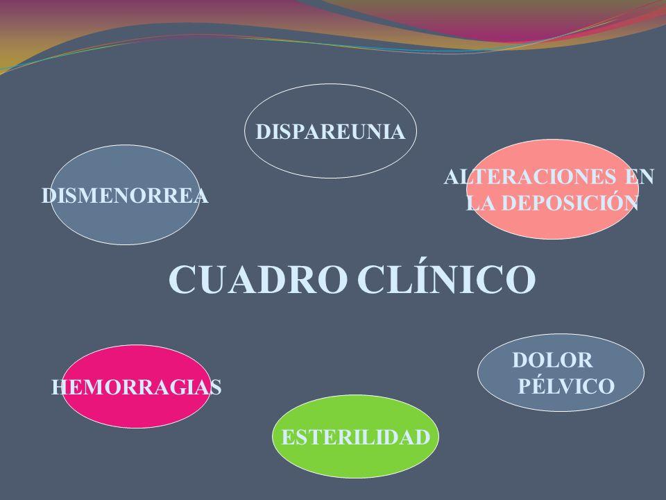 DISMENORREA DISPAREUNIA ALTERACIONES EN LA DEPOSICIÓN HEMORRAGIAS ESTERILIDAD DOLOR PÉLVICO CUADRO CLÍNICO