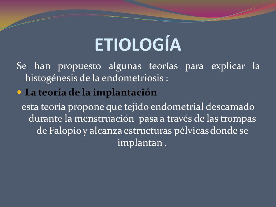 ETIOLOGÍA La teoría de la metaplasia celómica : Establece que células multipotenciales inmaduras del revestimiento celómico embrionario pueden persistir en la edad adulta La teoría del transplante directo: es la explicación probable para la endometriosis que se desarrolla en un episiotomía, cesárea y otras cicatrices quirúrgicas.