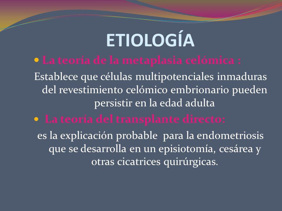 FISIOPATOLOGÍA Tejido ectópico Quistes microscópicos Proliferación continua Aumento de la vascularización La actividad de glándulas Acción de hormonas Aumento del quiste Lesiones tempranas Endometriosis avanzada Fibrosis
