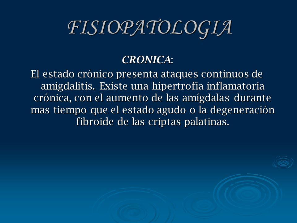 FISIOPATOLOGIA CRONICA: El estado crónico presenta ataques continuos de amigdalitis. Existe una hipertrofia inflamatoria crónica, con el aumento de la