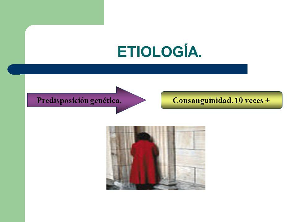ETIOLOGÍA. Consanguinidad. 10 veces + Predisposición genética.