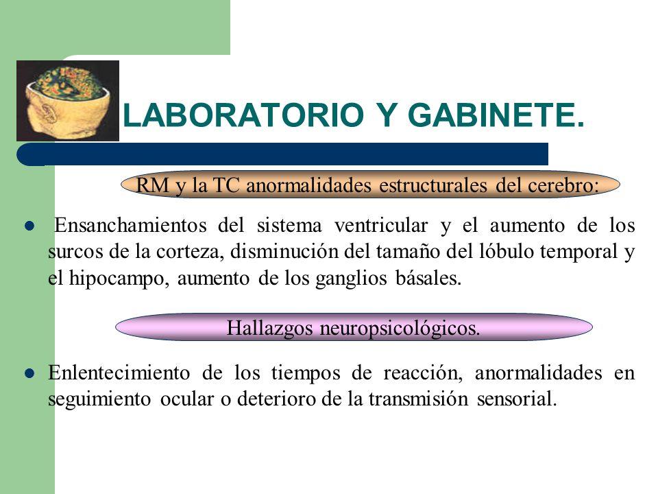 LABORATORIO Y GABINETE.