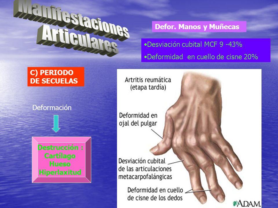 C) PERIODO DE SECUELAS Deformación Destrucción : Cartílago Hueso Hiperlaxitud Defor. Manos y Muñecas Desviación cubital MCF 9 -43% Deformidad en cuell