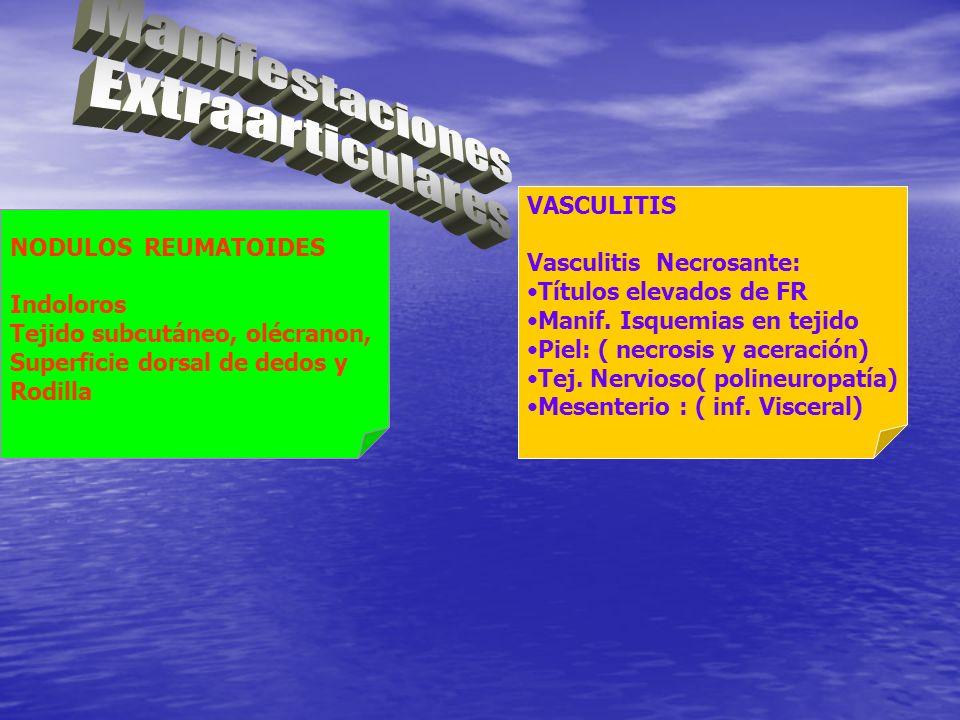 NODULOS REUMATOIDES Indoloros Tejido subcutáneo, olécranon, Superficie dorsal de dedos y Rodilla VASCULITIS Vasculitis Necrosante: Títulos elevados de