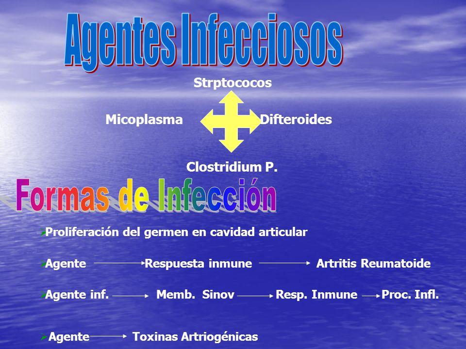 Difteroides Strptococos Micoplasma Clostridium P. Proliferación del germen en cavidad articular Agente Respuesta inmune Artritis Reumatoide Agente inf