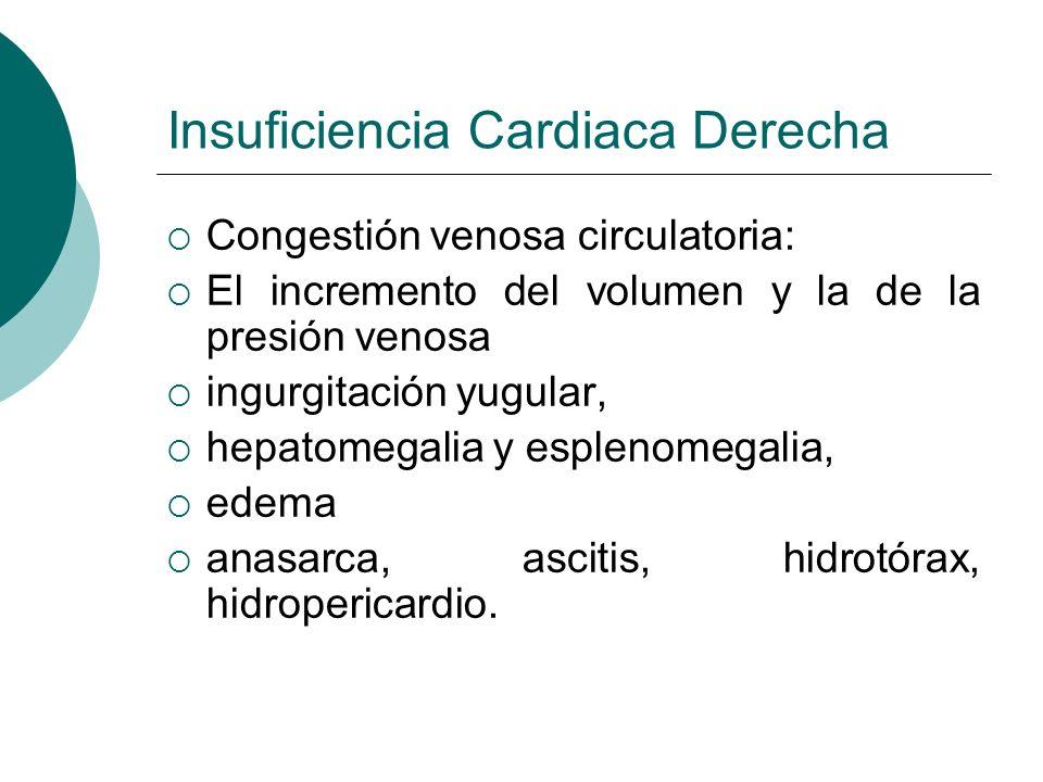 Insuficiencia Cardiaca Derecha Hipertensión venocapilar pulmonar: El aumento del volumen y de la presión sanguínea en el pequeño circuito disnea, ortopnea, edema agudo pulmonar,