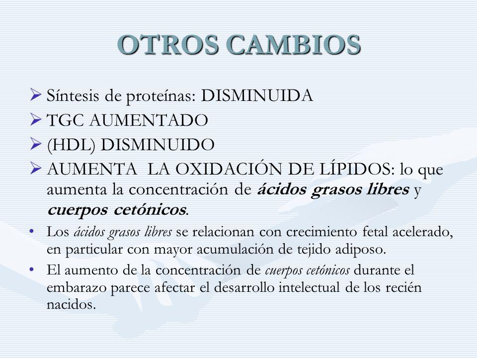 OTROS CAMBIOS Síntesis de proteínas: DISMINUIDA TGC AUMENTADO (HDL) DISMINUIDO AUMENTA LA OXIDACIÓN DE LÍPIDOS: lo que aumenta la concentración de áci