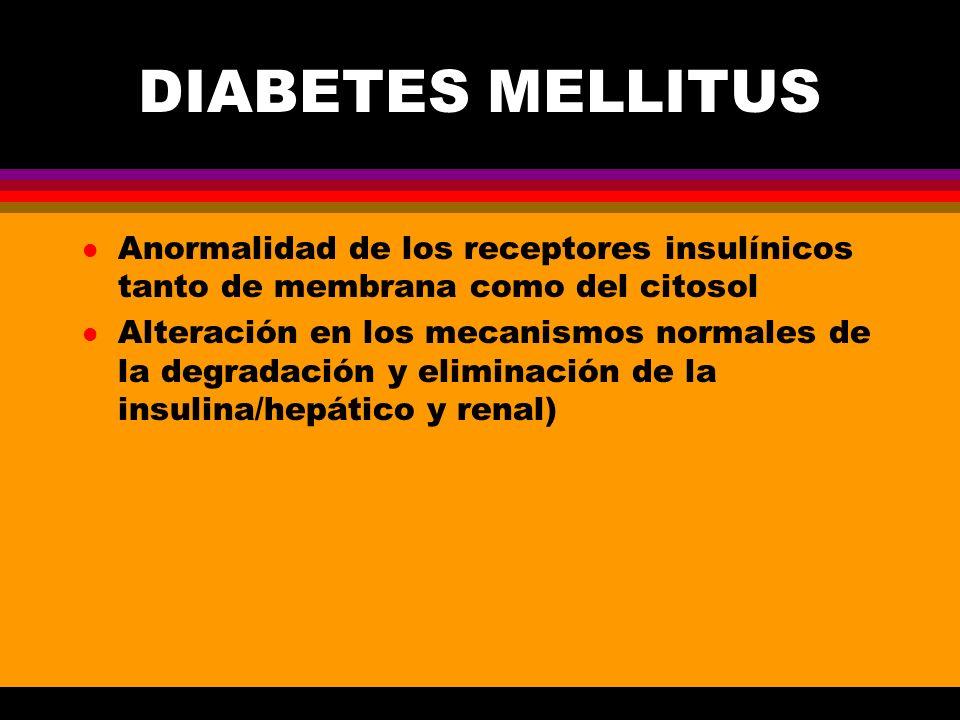 DIABETES MELLITUS l Anormalidad de los receptores insulínicos tanto de membrana como del citosol l Alteración en los mecanismos normales de la degrada