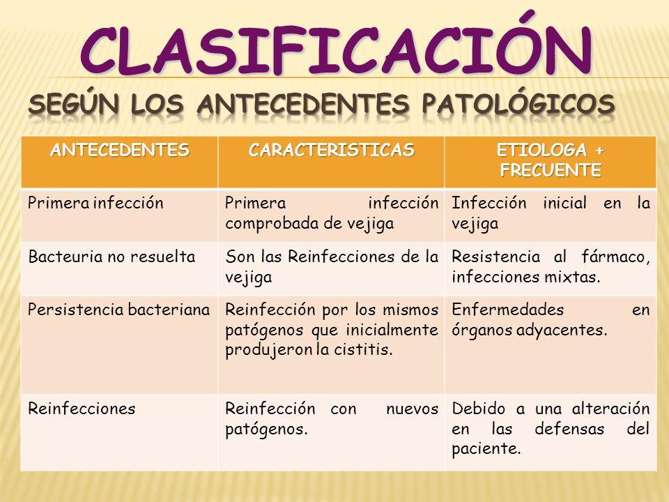 ANTECEDENTESCARACTERISTICAS ETIOLOGA + FRECUENTE Primera infecciónPrimera infección comprobada de vejiga Infección inicial en la vejiga Bacteuria no r
