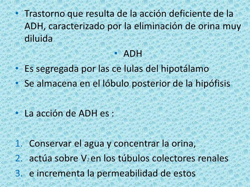 Trastorno que resulta de la acción deficiente de la ADH, caracterizado por la eliminación de orina muy diluida ADH Es segregada por las ce lulas del h