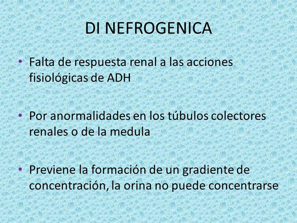 DI NEFROGENICA Falta de respuesta renal a las acciones fisiológicas de ADH Por anormalidades en los túbulos colectores renales o de la medula Previene