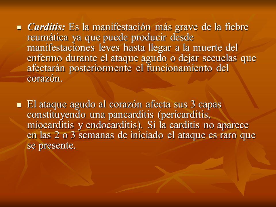 Carditis: Es la manifestación más grave de la fiebre reumática ya que puede producir desde manifestaciones leves hasta llegar a la muerte del enfermo
