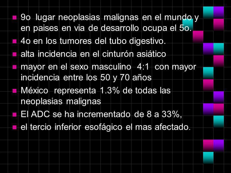 n 9o lugar neoplasias malignas en el mundo y en paises en via de desarrollo ocupa el 5o. n 4o en los tumores del tubo digestivo. n alta incidencia en