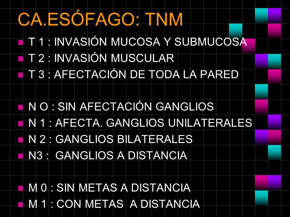 CA.ESÓFAGO: TNM n T 1 : INVASIÓN MUCOSA Y SUBMUCOSA n T 2 : INVASIÓN MUSCULAR n T 3 : AFECTACIÓN DE TODA LA PARED n N O : SIN AFECTACIÓN GANGLIOS n N