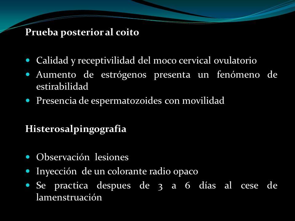 Prueba posterior al coito Calidad y receptivilidad del moco cervical ovulatorio Aumento de estrógenos presenta un fenómeno de estirabilidad Presencia
