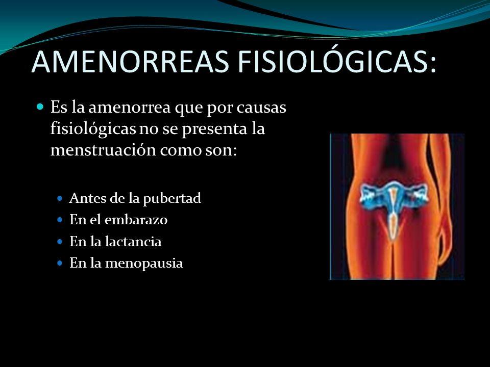 AMENORREAS FISIOLÓGICAS: Es la amenorrea que por causas fisiológicas no se presenta la menstruación como son: Antes de la pubertad En el embarazo En l