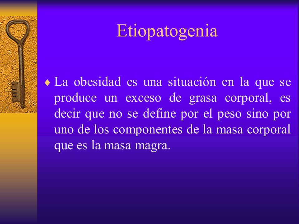 Etiopatogenia La ingesta energética está determinada por el aporte calórico de la alimentación.