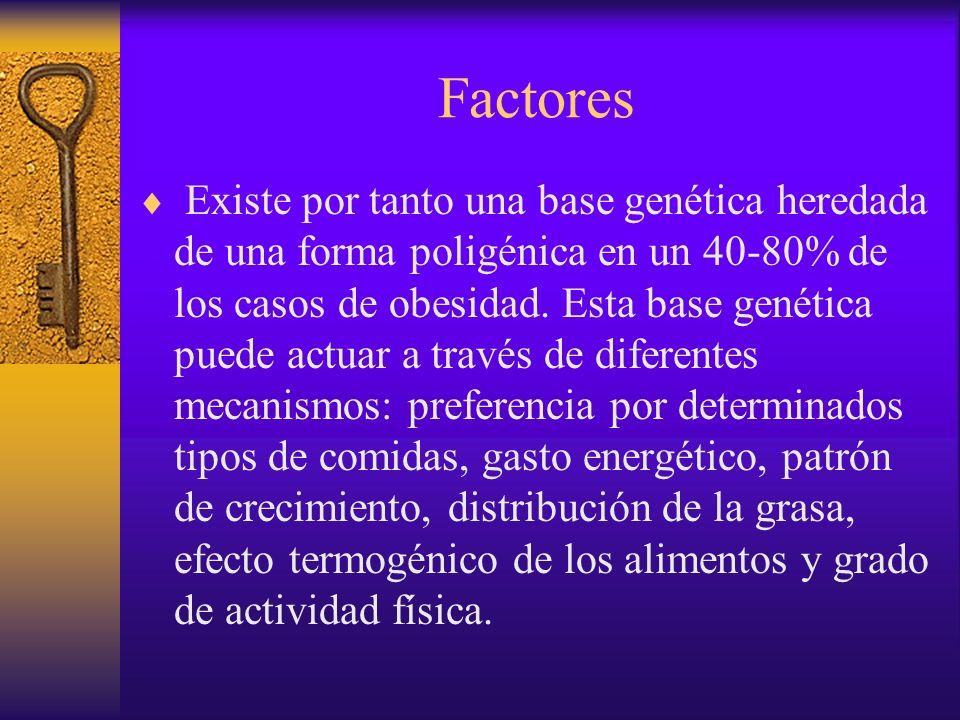 Factores Genes de la obesidad