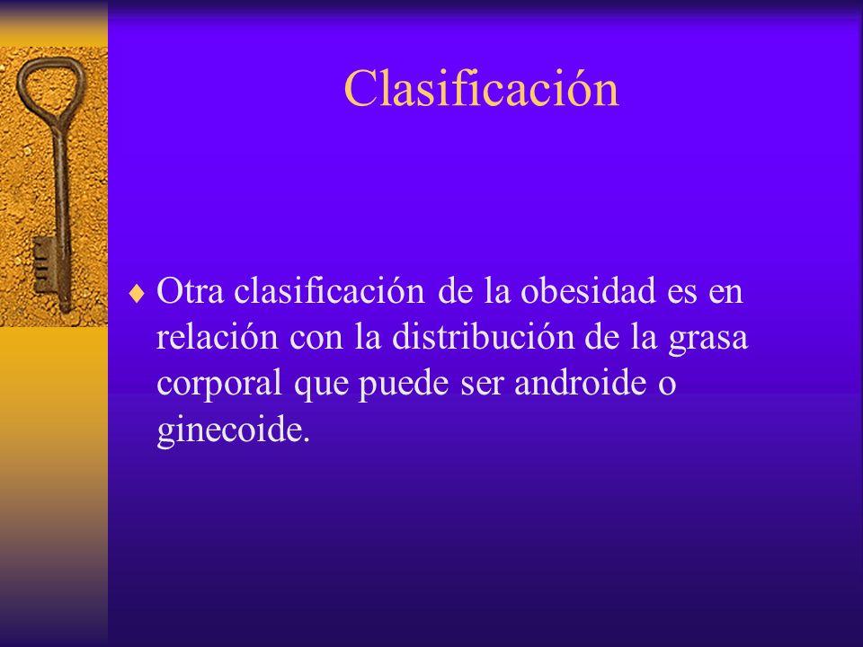 Clasificación Distribución tipo androide.También se llama de tipo masculino.