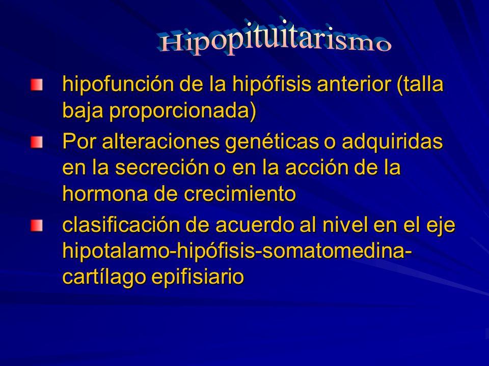 hipofunción de la hipófisis anterior (talla baja proporcionada) Por alteraciones genéticas o adquiridas en la secreción o en la acción de la hormona d
