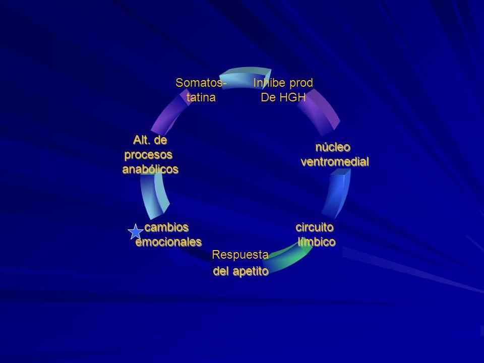 Inhibe prod De HGH núcleoventromedial circuitolímbico Respuesta del apetito cambiosemocionales Alt. de procesosanabólicos Somatos- tatina
