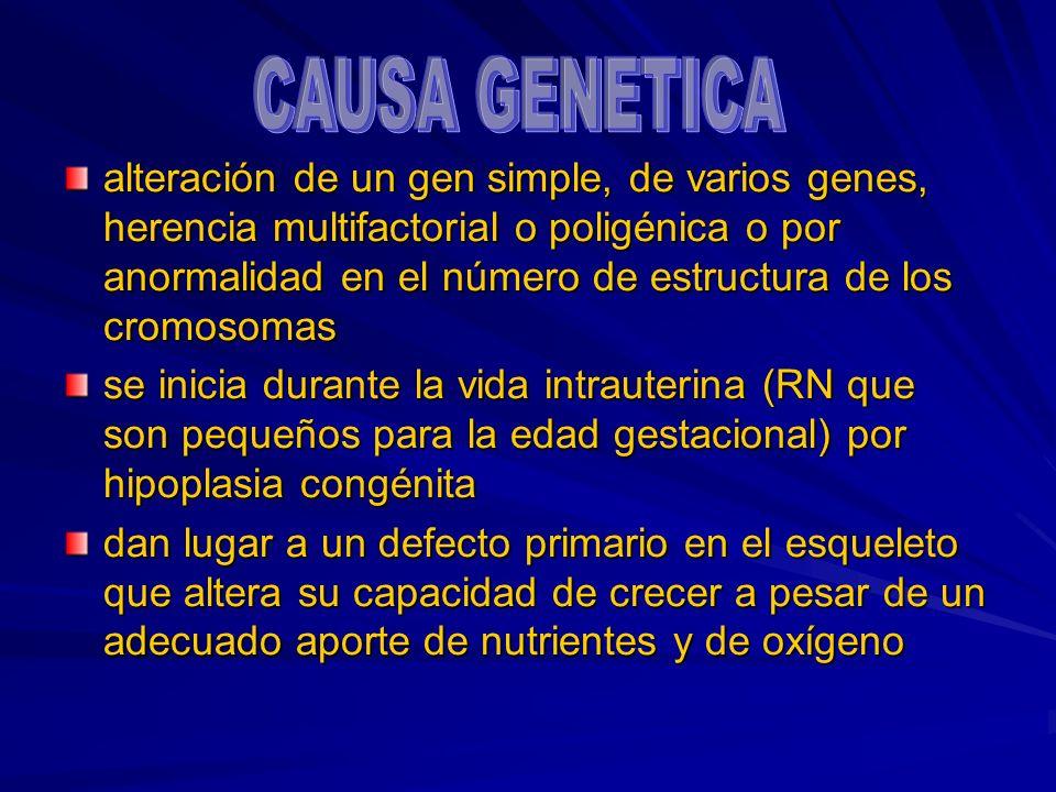 CAUSA GENETICA gen simple varios genes herencia multifactorial hipoplasia congénita vida intrauterina Pequeños para EG defecto 1o en esqueleto