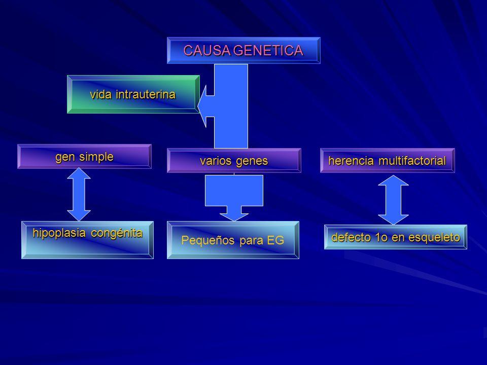 Hipotiroidismo adquirido Destrucción glándula de glándulatiroidesdesaceleración del crecimiento estatural retraso en la maduración ósea y dental disminución en la actividad física constipación, palidez y anemia tx hormonas tiroideas anticuerpos Dx anticuerposantiriroideos