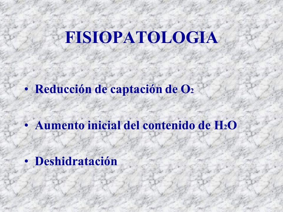 FISIOPATOLOGIA Reducción de captación de O 2 Aumento inicial del contenido de H 2 O Deshidratación