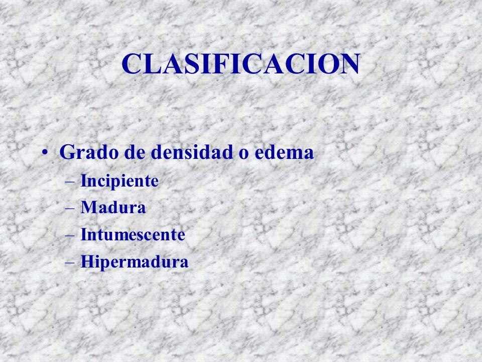 CLASIFICACION Grado de densidad o edema –Incipiente –Madura –Intumescente –Hipermadura
