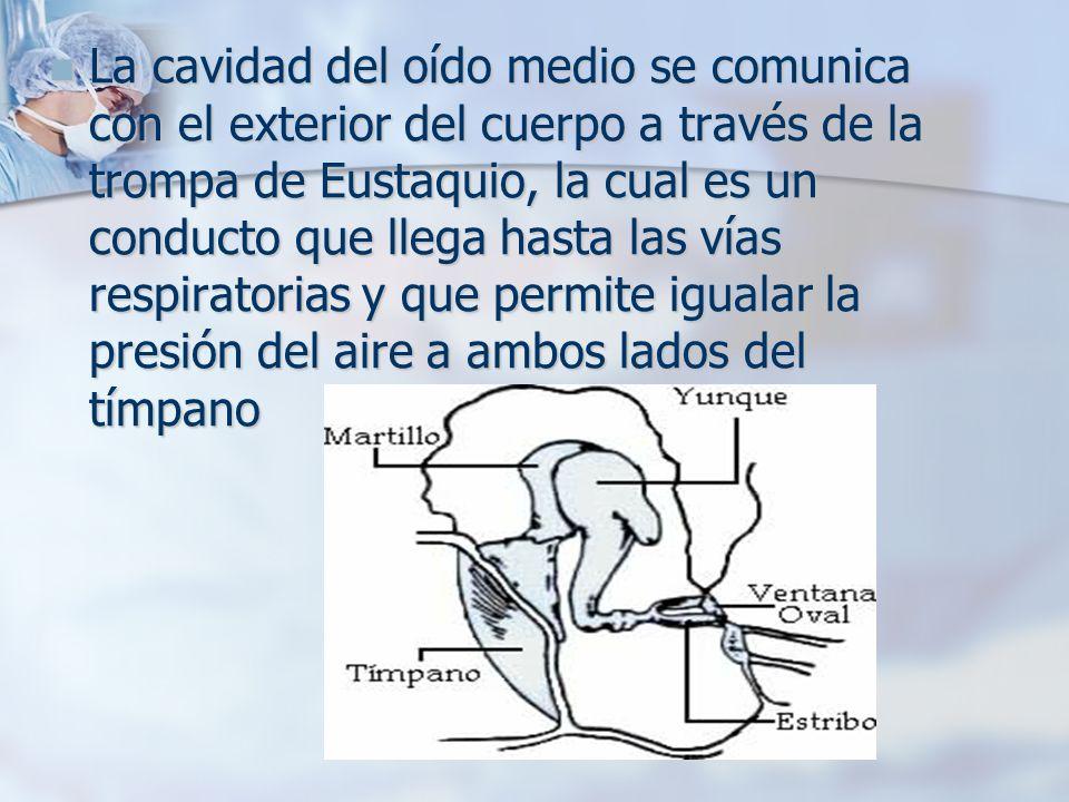 La cavidad del oído medio se comunica con el exterior del cuerpo a través de la trompa de Eustaquio, la cual es un conducto que llega hasta las vías r