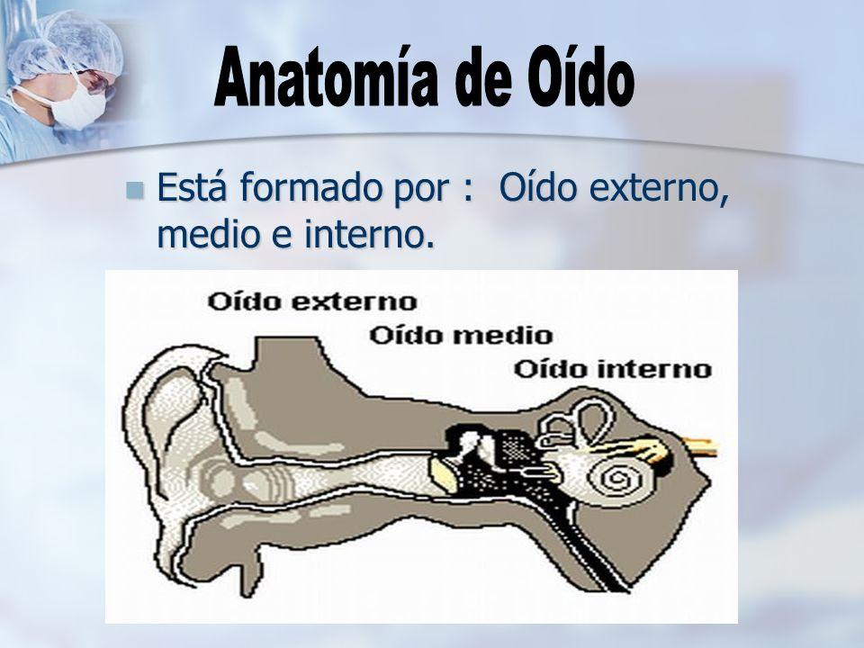 Oído externo OIDO EXTERNO: Aparato de transmisión, recoge las ondas sonoras del ambiente y las conduce al oído interno.