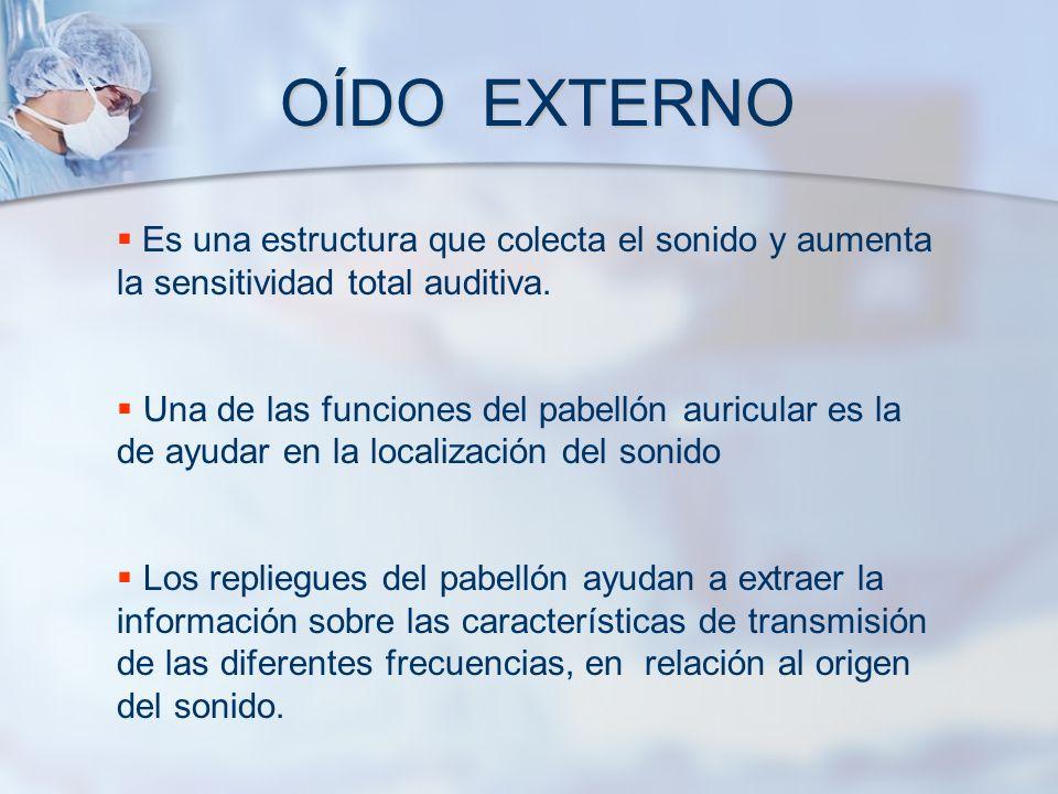 OÍDO EXTERNO Es una estructura que colecta el sonido y aumenta la sensitividad total auditiva. Una de las funciones del pabellón auricular es la de ay