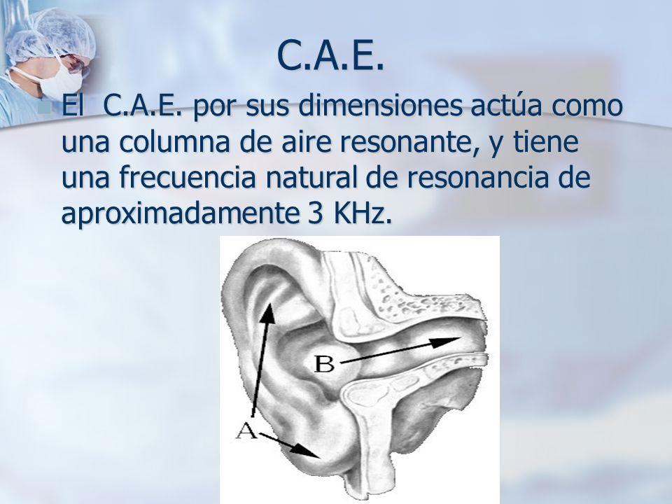 C.A.E. El C.A.E. por sus dimensiones actúa como una columna de aire resonante, y tiene una frecuencia natural de resonancia de aproximadamente 3 KHz.