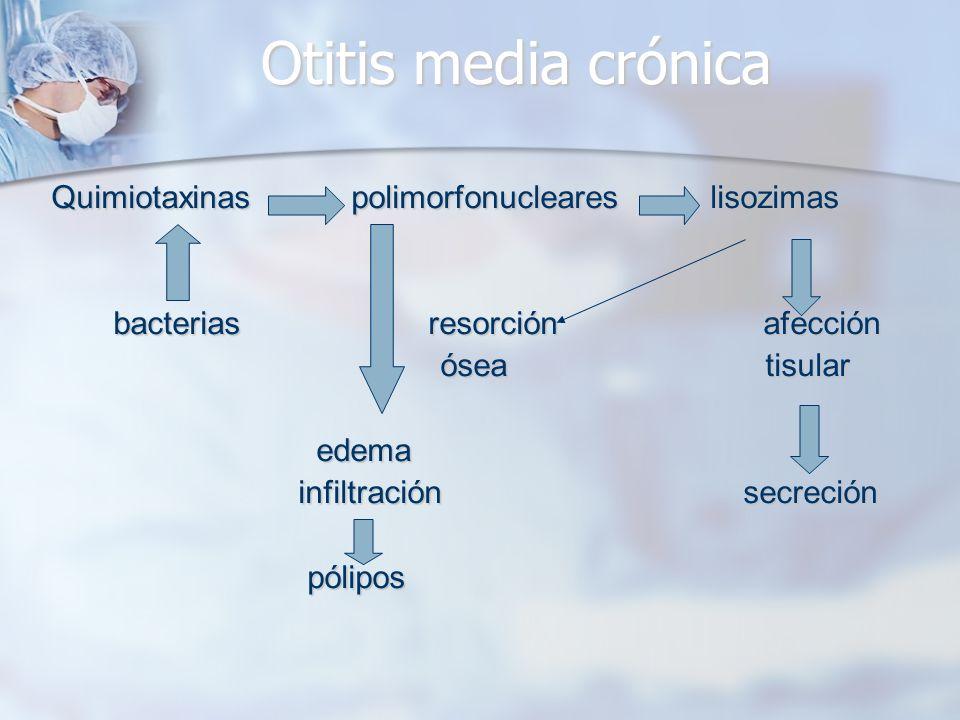 Otitis media crónica Quimiotaxinas polimorfonucleares lisozimas bacterias resorción afección bacterias resorción afección ósea tisular ósea tisular ed