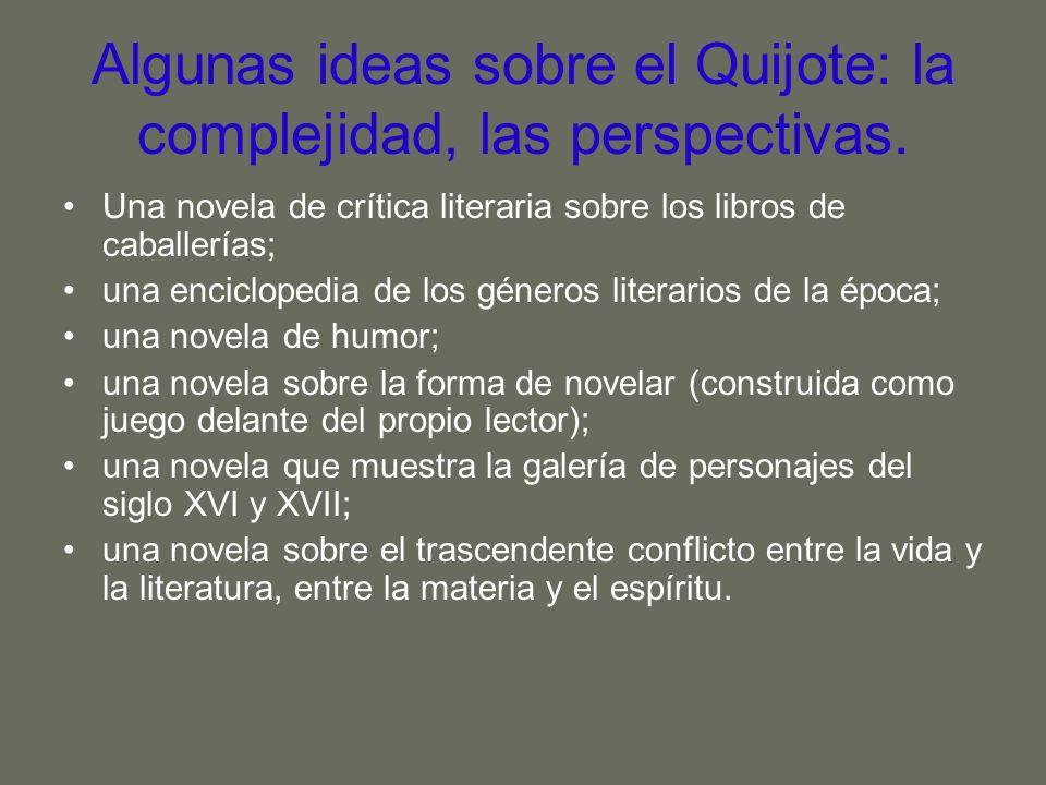 Algunas ideas sobre el Quijote: la complejidad, las perspectivas. Una novela de crítica literaria sobre los libros de caballerías; una enciclopedia de