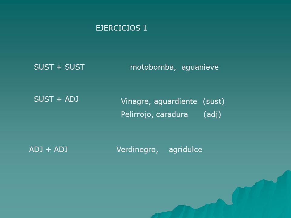 EJERCICIOS 1 SUST + SUSTmotobomba, aguanieve SUST + ADJ Vinagre, aguardiente (sust) Pelirrojo, caradura (adj) ADJ + ADJVerdinegro, agridulce