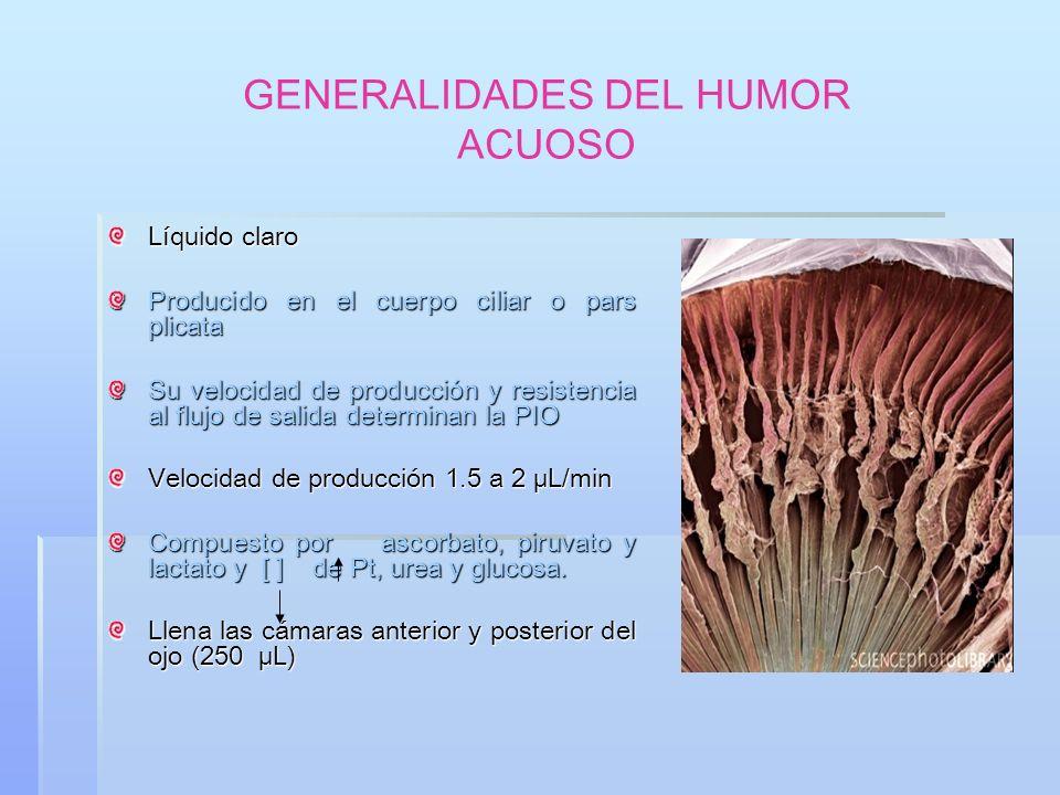 GLAUCOMA DE ÁNGULO ABIERTO * Se presenta como un glaucoma con presión intraocular elevada y daño demostrable, o como glaucoma de presión normal.