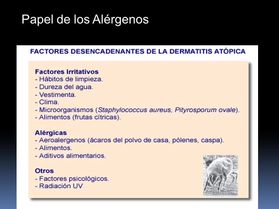 Papel de los Alérgenos