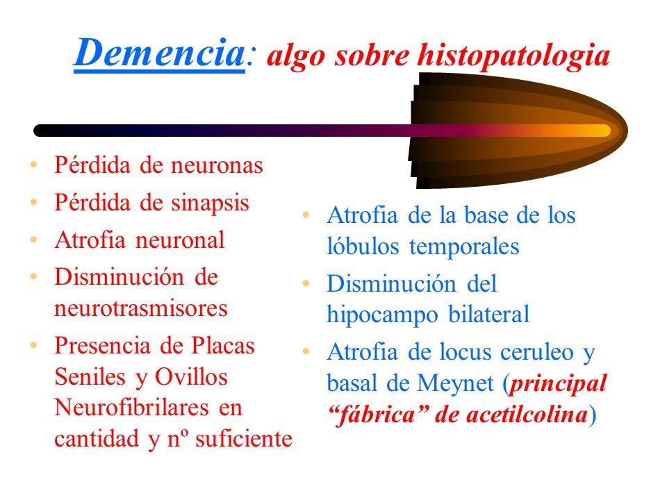 Demencia: algo sobre histopatologia Pérdida de neuronas Pérdida de sinapsis Atrofia neuronal Disminución de neurotrasmisores Presencia de Placas Senil