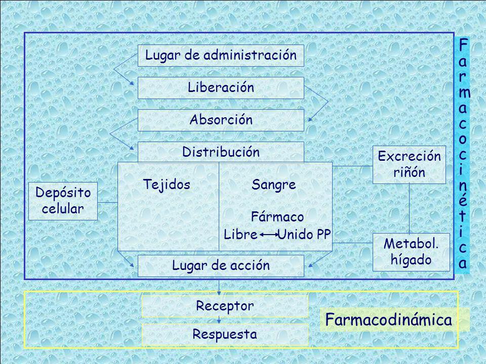 Lugar de administración Liberación Absorción Distribución TejidosSangre Fármaco Libre Unido PP Depósito celular Excreción riñón Metabol. hígado Lugar