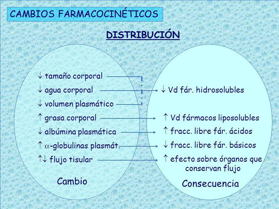 CAMBIOS FARMACOCINÉTICOS capacidad metabólica reacciones fase I metabolismo de fármacos que sufren : - hidrólisis - N-dealquilación - N-demetilación - Nitrorreducción flujo plasmático hepático metabolismo de fármacos de alta extracción hepática masa hepática posible metabolismo de los fármacos con cinética de saturación METABOLISMO Cambios Consecuencias