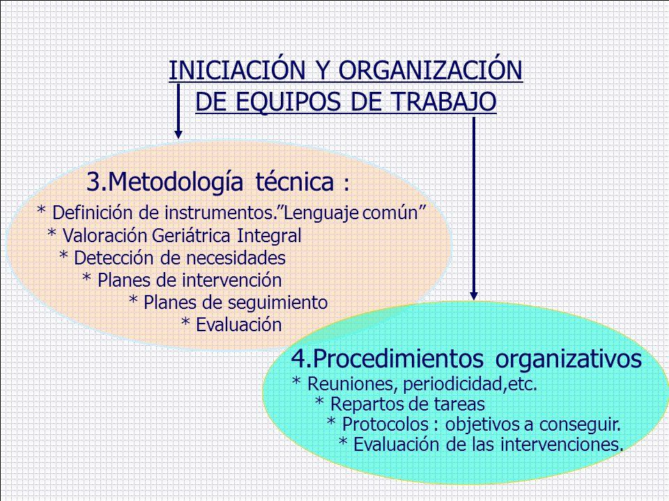 INICIACIÓN Y ORGANIZACIÓN DE EQUIPOS DE TRABAJO 3.Metodología técnica : * Definición de instrumentos.Lenguaje común * Valoración Geriátrica Integral *
